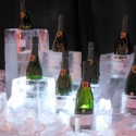 Champagne Display coolers