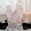 Cockerel Ice Sculpture from Passion for Ice