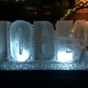 Jobe 40 Vodka Luge from Passion for Ice