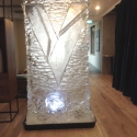 Liv Student Sheffield Vodka Luge from Passion for Ice