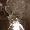 Oak Leaf Vodka Luge from Passion for Ice