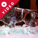 Circus Lion Vodka Luge from Passion for Ice