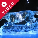 Circus Panther Vodka Luge from Passion for Ice