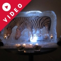 Circus Zebra Vodka Luge from Passion for Ice