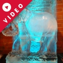 Standing Elephant Vodka Luge from Passion for Ice