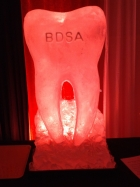 The 2019 BDSA Molar Vodka Luge from Passion for Ice