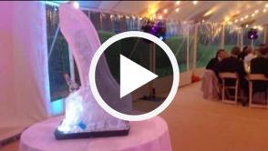 Wedding Ski Jump