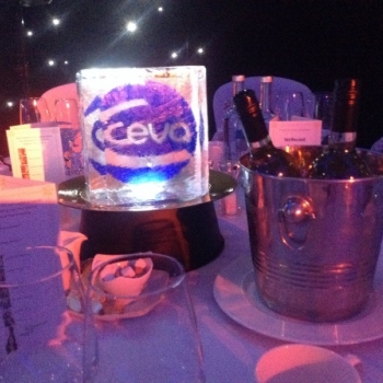 CEVA  Ice Centre Table Pieces from Passion for Ice
