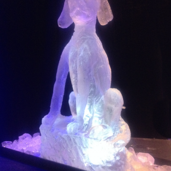 Dubarry Horn and Hound Ball Vodka Luge from Passion for Ice