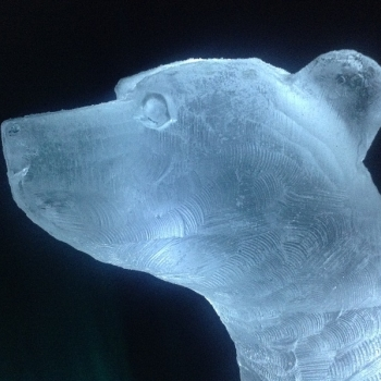 Close-up of Polar Bear Vodka Luge from Passion for Ice