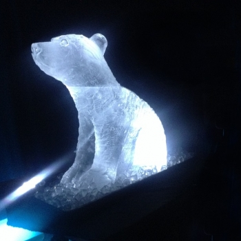 Side view of Polar Bear Vodka Luge from Passion for Ice
