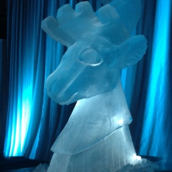 Reindeer Bust Vodka Luge from Passion for Ice