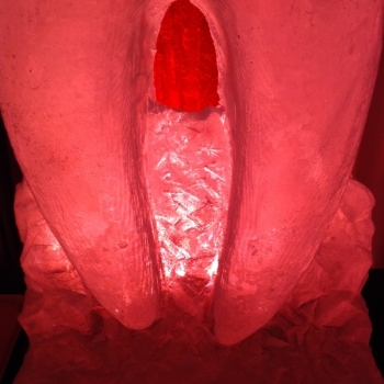 Molar Vodka Luge from Passion for Ice