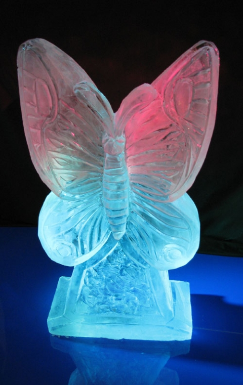 Butterfly Ice Sculpture from Passion for Ice