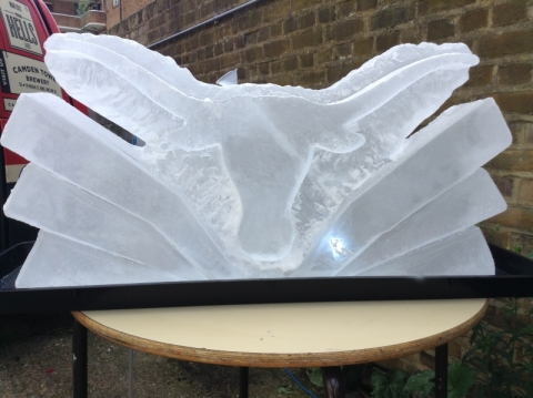 University of Texas Longhorn Logo Vodka Luge from Passion for Ice
