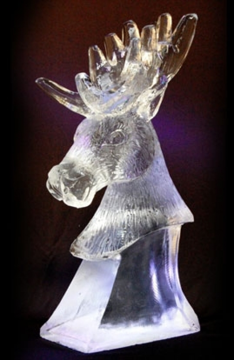 Stag's Head from Passion for Ice