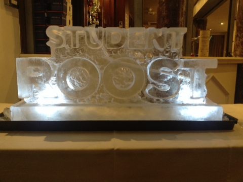 Student Roost Vodka Luge from Passion for Ice